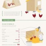 raisingchickens_4ffdaaf62043c (How much do those Chickens Cost/Earn?)