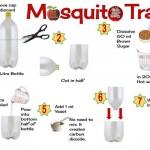 mosquito-trap-infogram (Homemade Mosquito Traps)